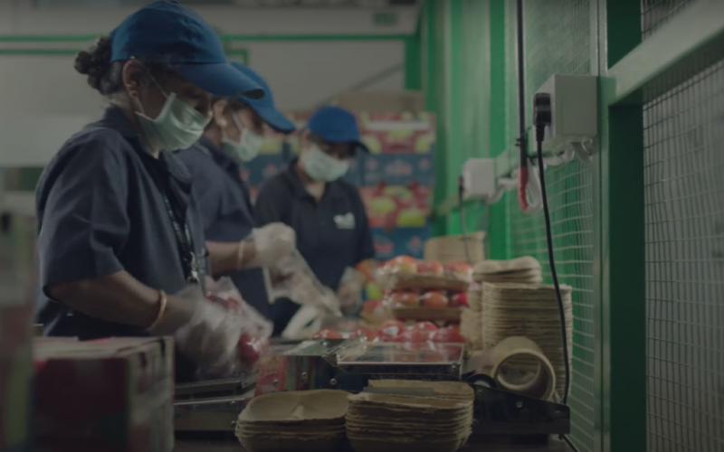 waycool foods funding